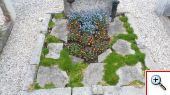 Friedhof006